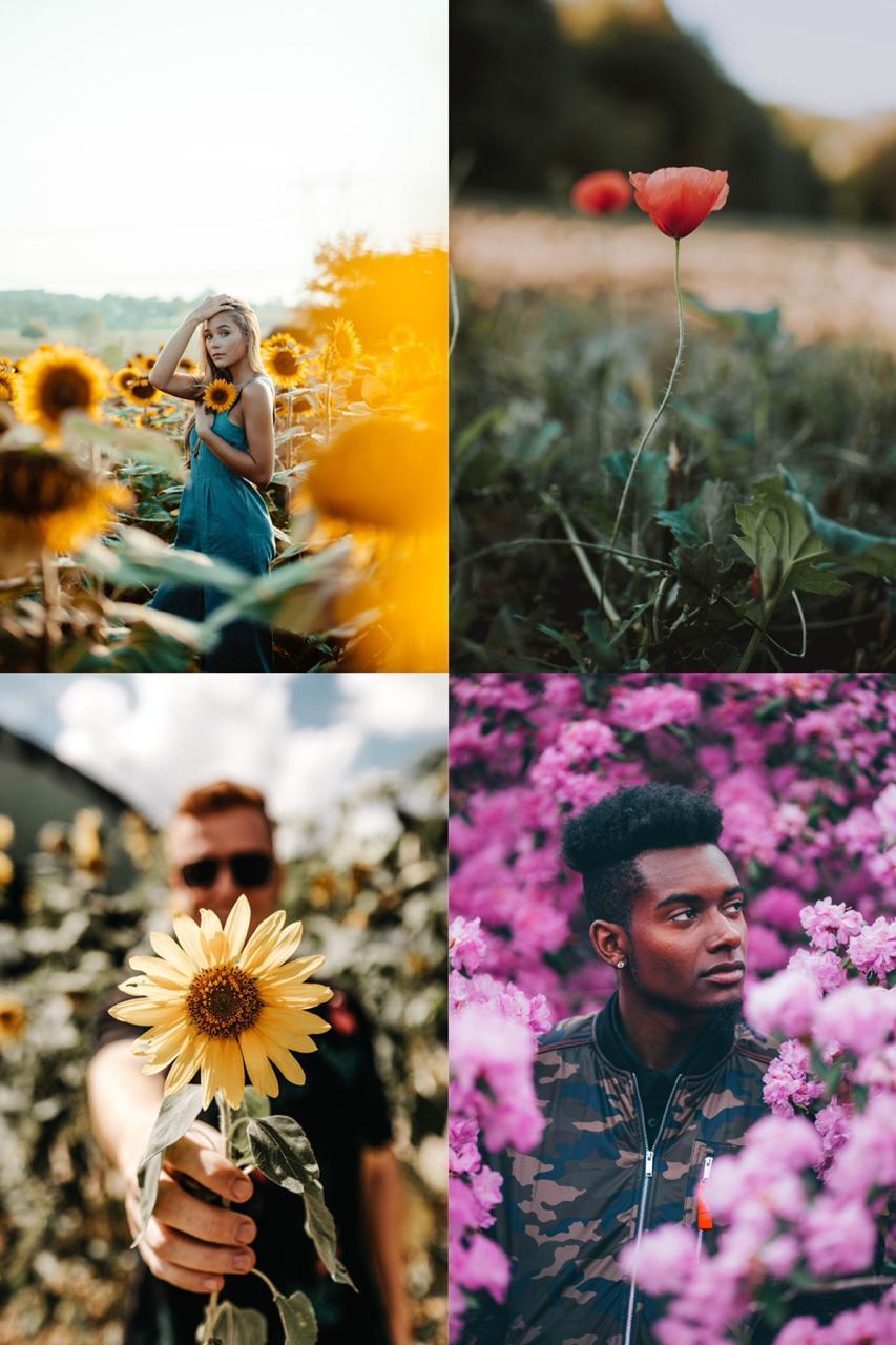quatro fotos lindas para primavera