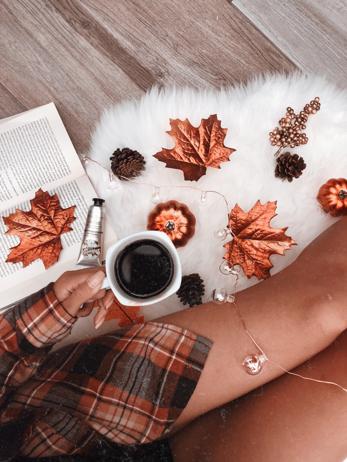 flatlay de otoño