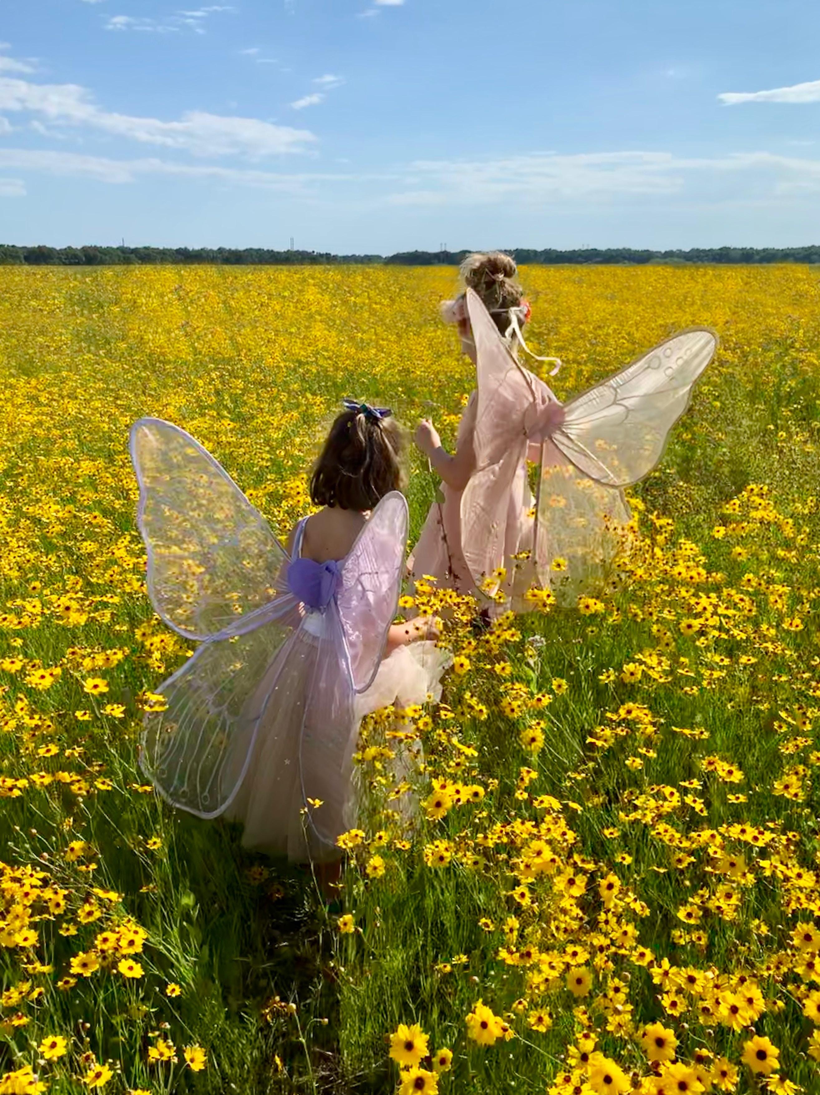 duas meninas vestidas de fadas em um campo de flores
