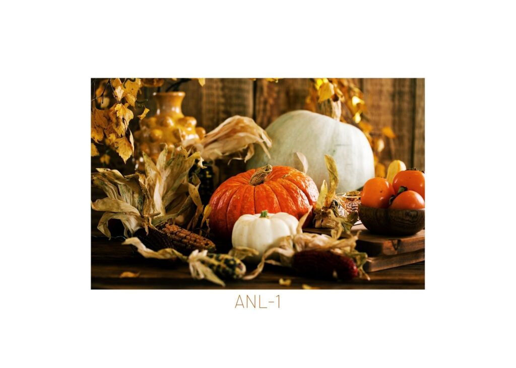collection of orange and white fall pumpkins