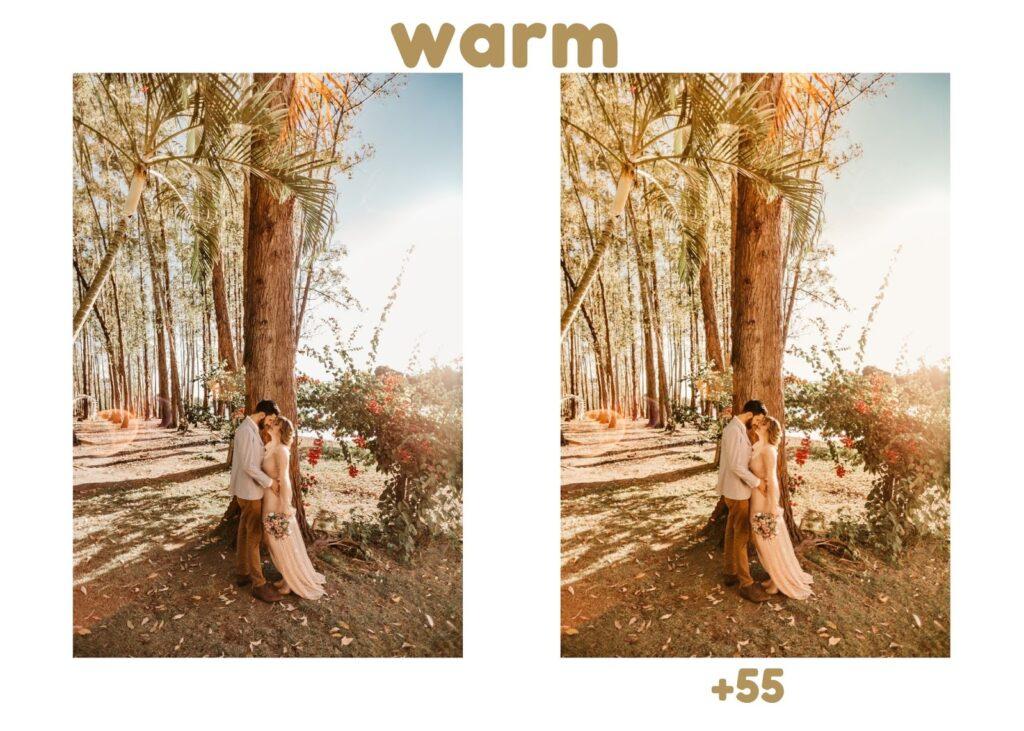 Warmer