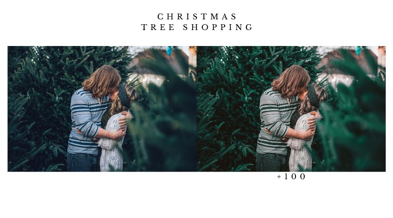 a couple kissing in between Christmas trees