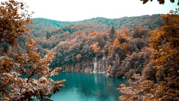 una bella cascada en el bosque