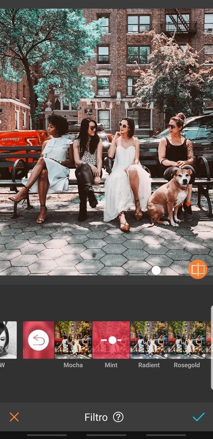 grupo de amigas sentadas en una banca en la calle