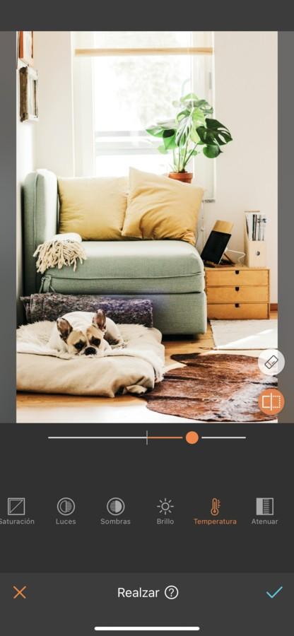 foto del interior de una casa con un perro dormido en su cama en la sala de estar