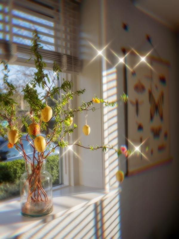 foto del interior de un carro con luz del sol y un árbol de limones