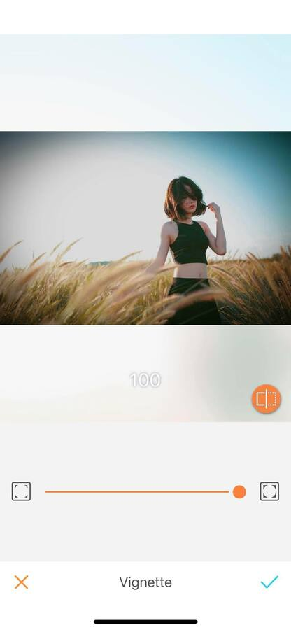 How to use: Vignette 03