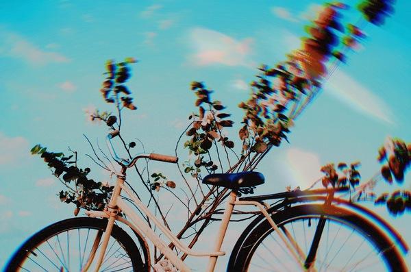 Ediciones para ela día mundial de la bicicleta - Despues