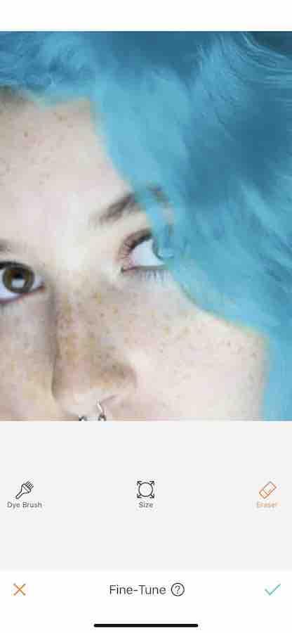 Hair Dye 03
