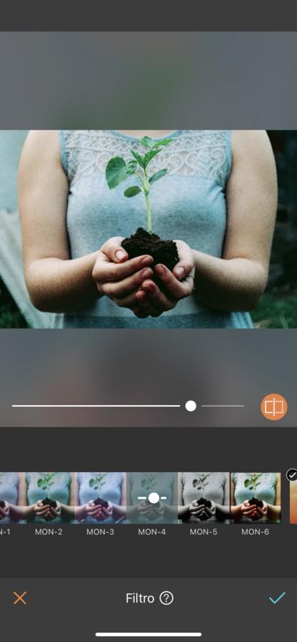 Tierra: Los 4 elementos en filtros