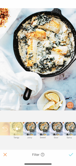 Mouthwatering Foodie Filters 14