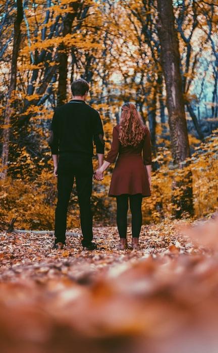 Fall Colors Tool Magic 19