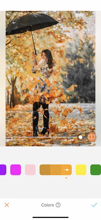 Fall Colors Tool Magic 12