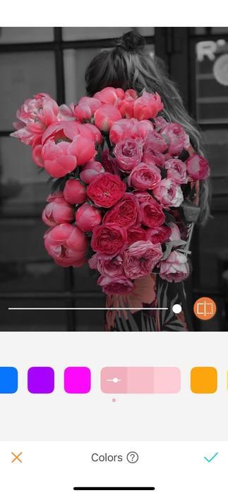 Belles en rose11