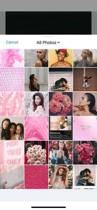 Belles en rose16