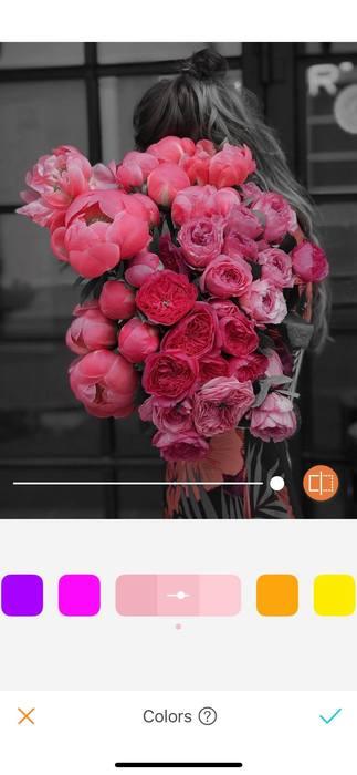 Belles en rose12