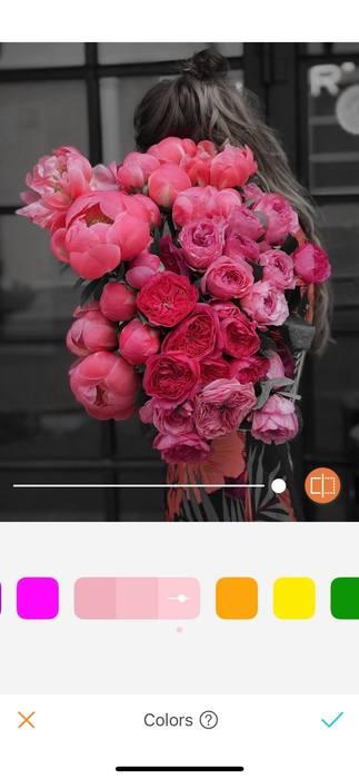 Belles en rose13