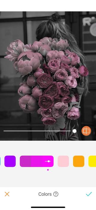 Belles en rose14
