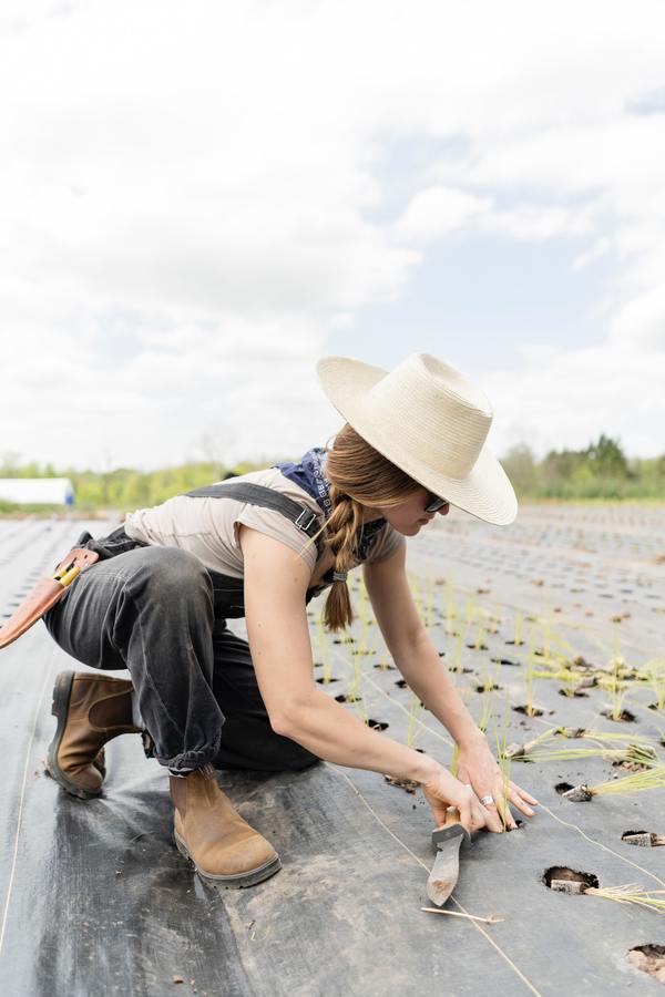 Faça fotos inspiradas na Fazenda