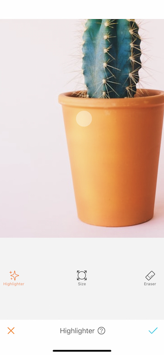 cactus plant in a glass pot in front of pink background