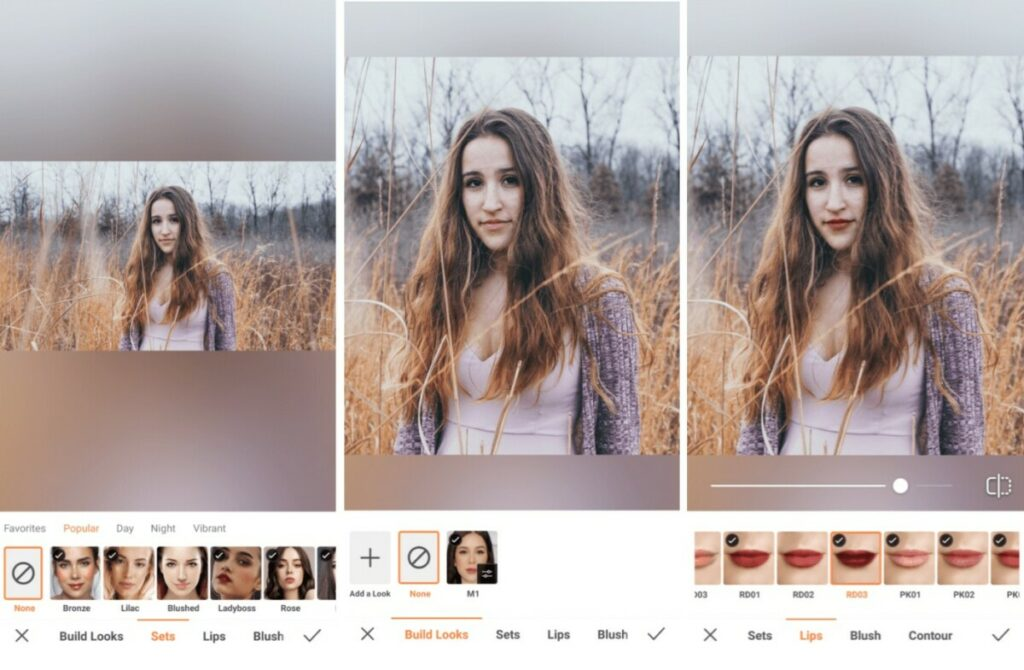 fall photos edit using Build Looks